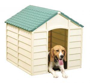 Caseta para perros Vigor-Blinky