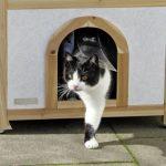La caseta para gatos grandes Tyrol Alpin tiene una cómoda puerta