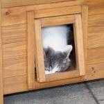La caseta para gatos grandes Lodge tiene una puerta abatible y transparente