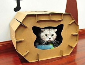 Caseta para gatos Eco-friendly – Tamaño…