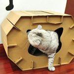 La caseta para gatos medianos Eco-friendly mantiene una temperatura ideal