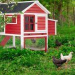 la caseta para gallinas mediana oneConcept Villa Gallo es perfecta para exteriores