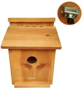 Caseta para pájaros Bestok – Tamaño…