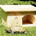 La puerta de la caseta para tortugas Blitzen es amplia