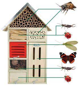Hotel de Insectos: Una Solución Amigable…